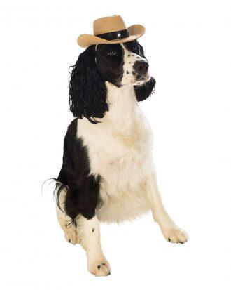 Cowboyhatt för Hundar - Medium/Large