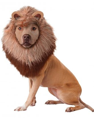 Djungelns Konung Hund Maskeraddräkt - Large