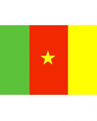 Flagga Cameroon