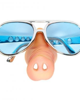 Glasögon med Grisnäsa